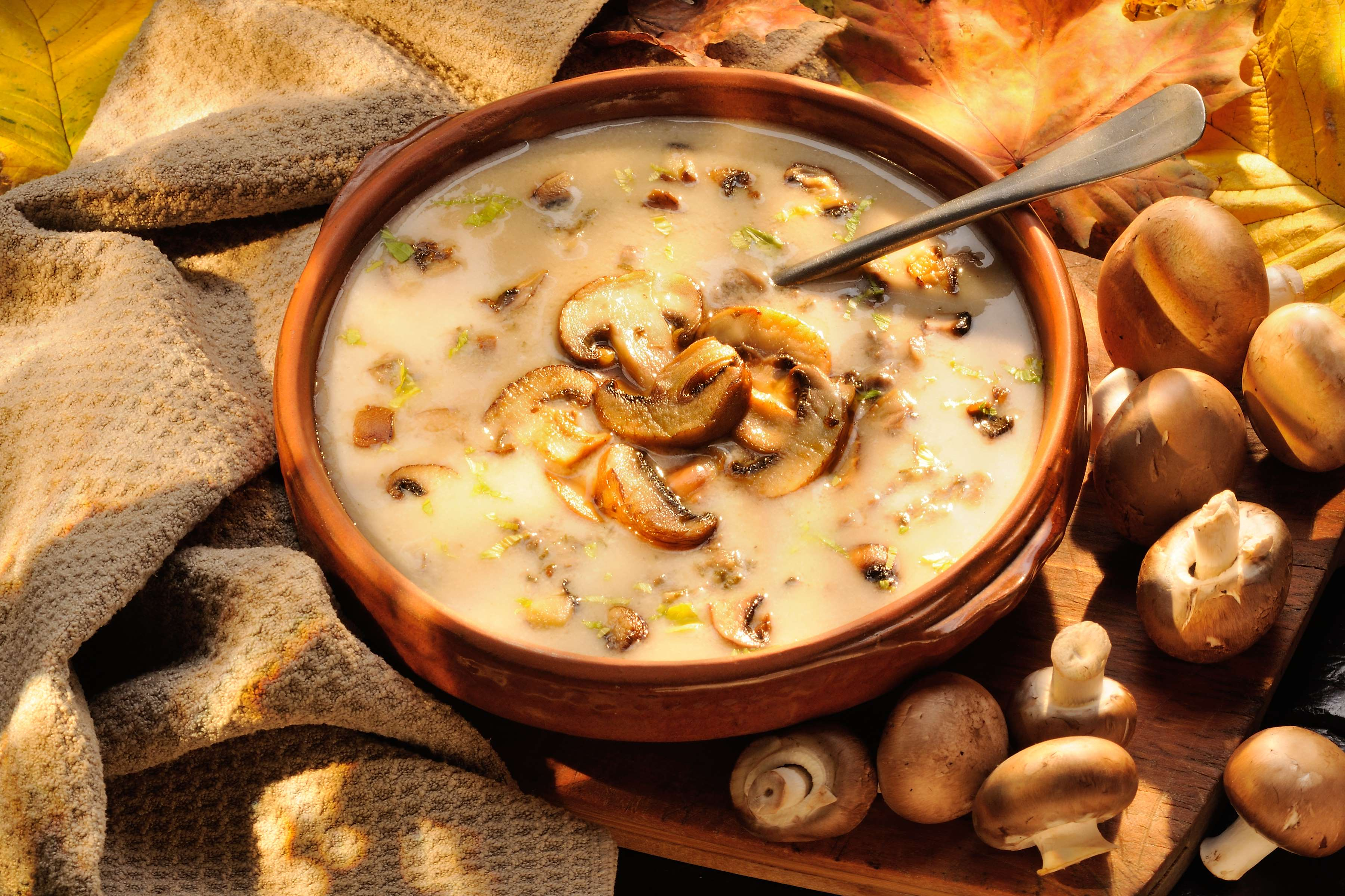 Rustic Mushroom Soup Recipe | RecipeSavants.com